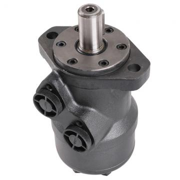 Blince Vane Pump Replace Yuken Series PV2r12, PV2r23, PV2r13 Double Vane Pump