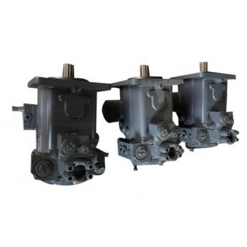 Rexroth Hydraulic Piston Pump A10vo Series Used for Various Machinery
